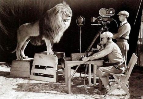 Filmandet av MGM lejonet, 1924