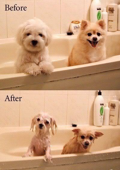 Före och Efter