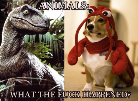 Djurens utveckling