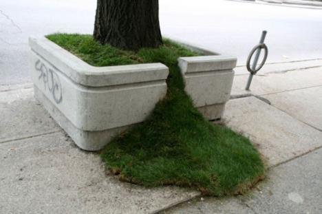 Cool trädgårdskonst i stadsmiljö