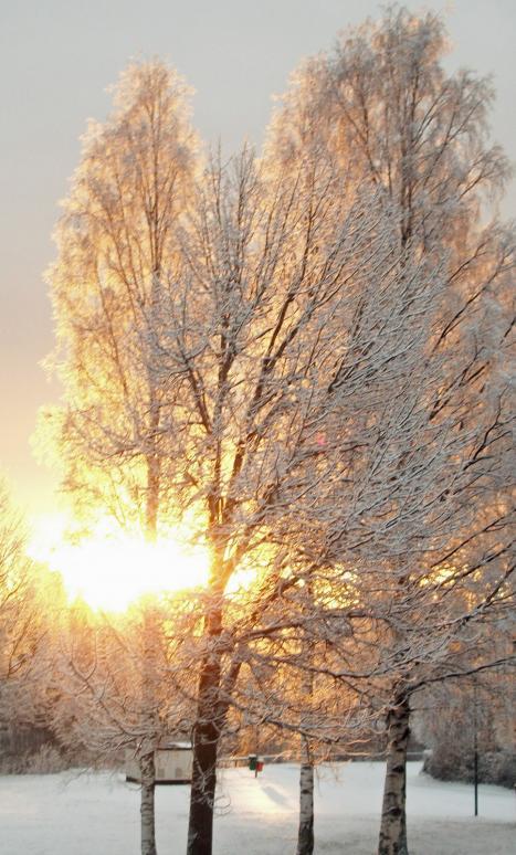 vintertid!