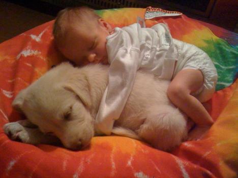 Hund och bebis myser