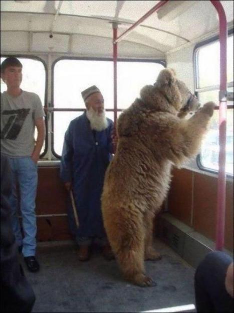 Samtidigt i Ryssland