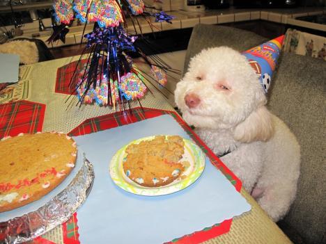 En nöjd födelsedagsfirare