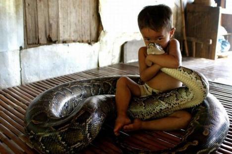 Liten pojke gosar med orm